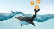 """""""比特币鲸鱼""""向Binance转移了5500比特币,价值3380万美元"""