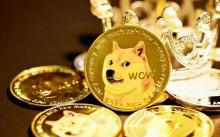 AMC首席执行官确认计划支持狗狗币支付