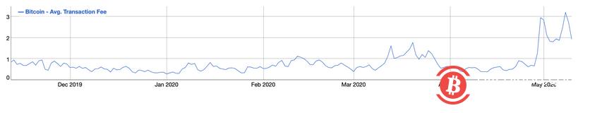 减半前,比特币网络转账平均费用增长8倍,刷新近半年