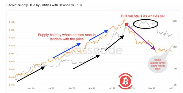 分析:鲸鱼持有的比特币数量上升或表明市场已触底